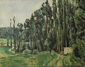 Paul Cézanne: Die Pappeln. Gegen
