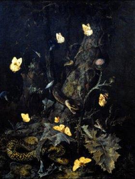 Otto Marseus van Schrieck: Schlangen und Schmetterlinge