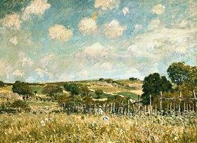 Alfred Sisley: Die Wiese