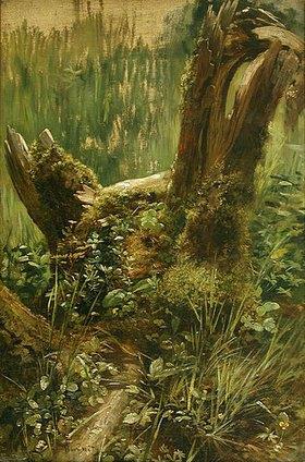 Carl Peter Burnitz: Baumstumpf zwischen Blumen und Gräsern