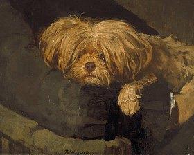 Bertha Wegmann: Hundegesicht