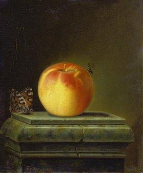 Justus Juncker: Stillleben mit Apfel und Insekten