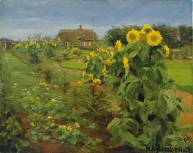 Hans Andersen Brendekilde: Sonnenblumenblüte
