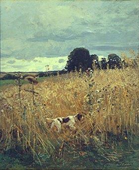 Hugo Mühlig: Am Getreidefeld