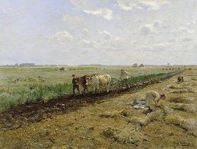 Hugo Mühlig: Bei der Feldarbeit
