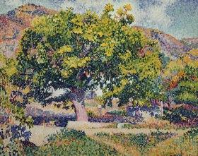 Henri Edmond Cross: In der Nähe meines Hauses