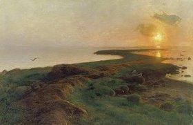 Hans Ole Brasen: Sonnenuntergang über einer Lagune