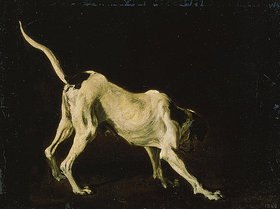 Frans Snyders: Ein weiss-schwarzer Hund