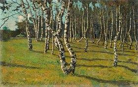 Konstantin Gorbatov: Birkenwäldchen. 1910-er Jahre