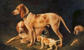 Alexander Gorbunov: Hundefamilie (Diana)