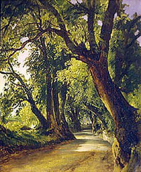 Mikhail Lebedev: Alte Bäume am Weg in Albano bei Rom
