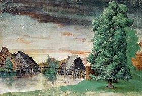 Albrecht Dürer: Die Weidenmühle