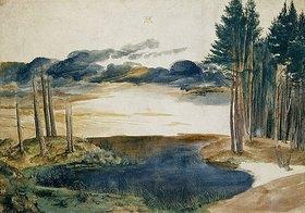 Albrecht Dürer: Weiher im Wald