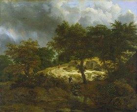 Jacob Isaacksz van Ruisdael: Waldlandschaft mit aufsteigendem Gewitter