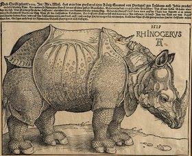 Albrecht Dürer: Nashorn. 1515. Für König Emanuel