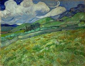 Vincent van Gogh: Berglandschaft hinter dem Hospital Saint-Paul