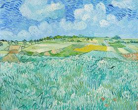 Vincent van Gogh: Die Ebene bei Auvers. 1890