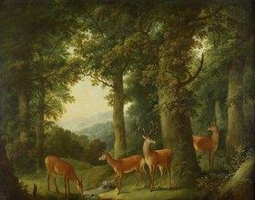 Johann Andreas Herrlein: Waldlandschaft mit Rotwild