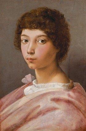 Raffael (Raffaello Sanzio): Alessandro Medici, Bildnis