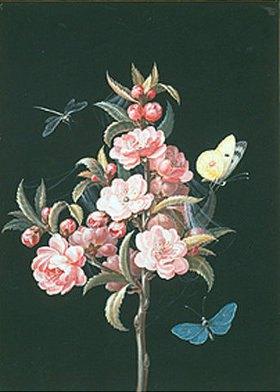 Barbara Regina Dietzsch: Japanische Quitte (oder Kirsche) mit Libelle und Schmetterlingen