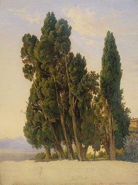 Carl Morgenstern: Zypressen im Park der Villa d'Este