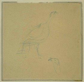 Henri de Toulouse-Lautrec: Truthenne