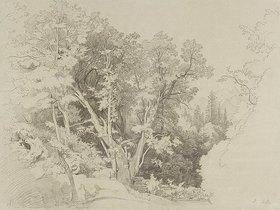 Johann Wilhelm Schirmer: Baumpartie mit dem gespaltenen B