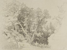 Johann Wilhelm Schirmer: Baumpartie mit dem gespaltenen Ba