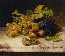 Johann Wilhelm Preyer: Früchtestillleben mit weißen und blauen Trauben auf Marmorplatte