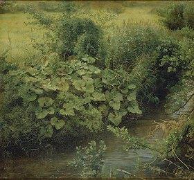 Johann Wilhelm Schirmer: 'Parthie'; an der Düssel mit Pestwurz (Wiesenbach)