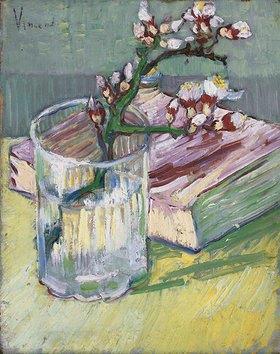 Vincent van Gogh: Stillleben mit blühendem Mandelzweig