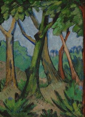Otto Mueller: Wald