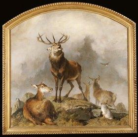 Sir Edwin Henry Landseer: Hirsche im Hochland