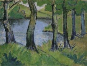 Otto Mueller: Waldsee
