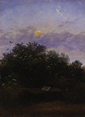 Carl Gustav Carus: Blühende Holunderecke im Mondschein