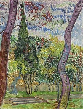 Vincent van Gogh: Der Park des Hospitals Saint-Paul. 1889