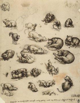 Leonardo da Vinci: Katzen, Löwen und Drachen