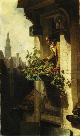 Mann beim Gießen des Blumenkastens