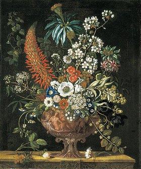 Pieter Casteels III: Die zwölf Monate. Ein floraler Kalender - Dezember