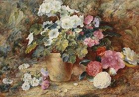 George Clare: Blumenstillleben mit Kamelien neben einem Topf mit  Pelargonien