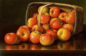 Levi Wells Prentice: Äpfel