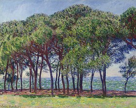 Claude Monet: Pinien am Cap d'Antibes