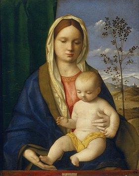 Giovanni Bellini: Maria, das Jesuskind auf ihrem Schoß haltend