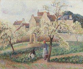Camille Pissarro: Blühende Pflaumenbäume