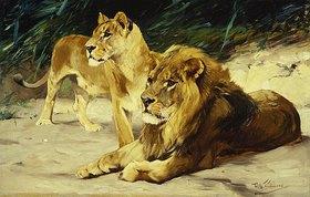 Wilhelm Kuhnert: Löwenpaar