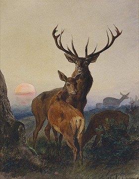 Carl Friedrich Deiker: Ein Hirsch und ein Reh bei Sonnenuntergang