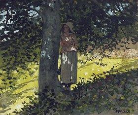 Winslow Homer: Ein Schattenplätzchen
