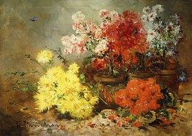 Eugene Henri Cauchois: Margeriten, Begonien und gelbe Astern