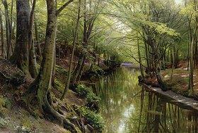 Peder Moensted: Gewässer in einem Wald