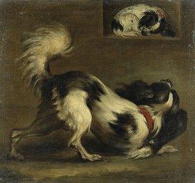 Johann Georg Ziesenis: Zwei Bologneser Hunde (Kontinentale Zwergspaniel)